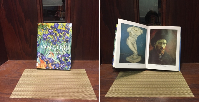 van gough book